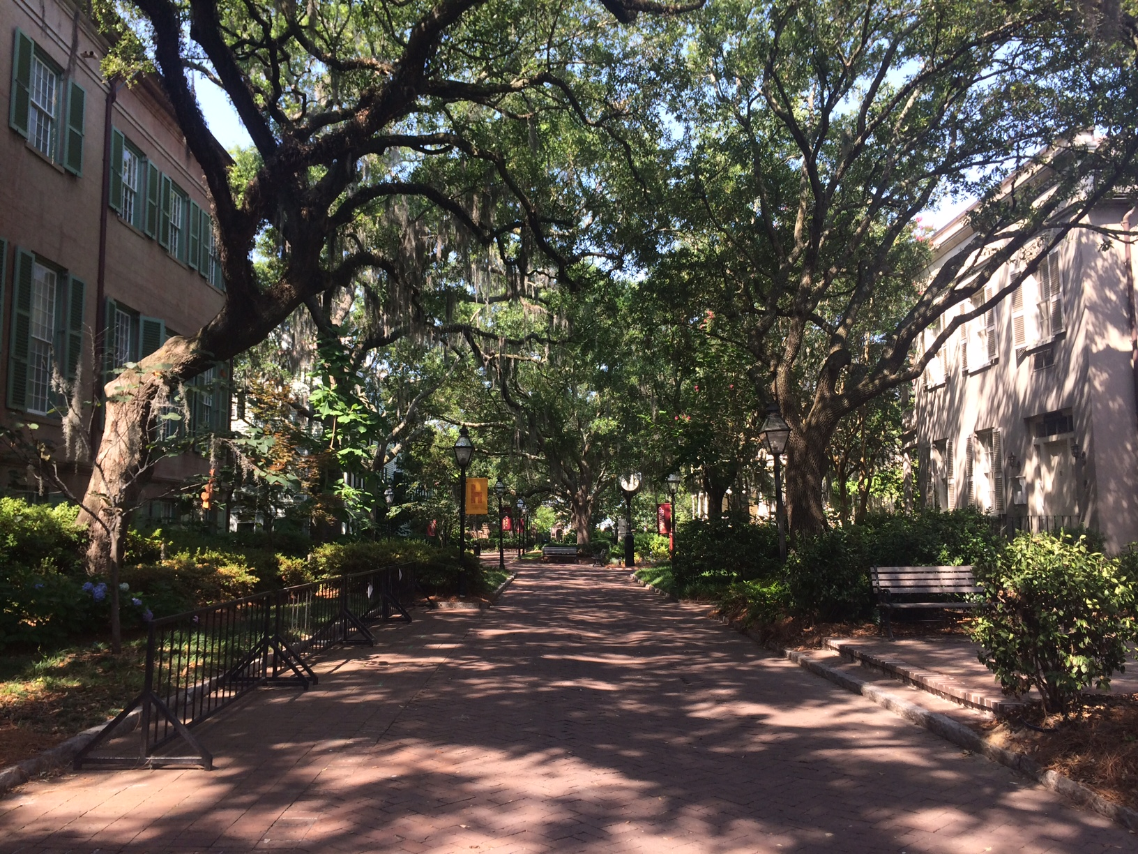 The College of Charleston campus, taken during our visit.